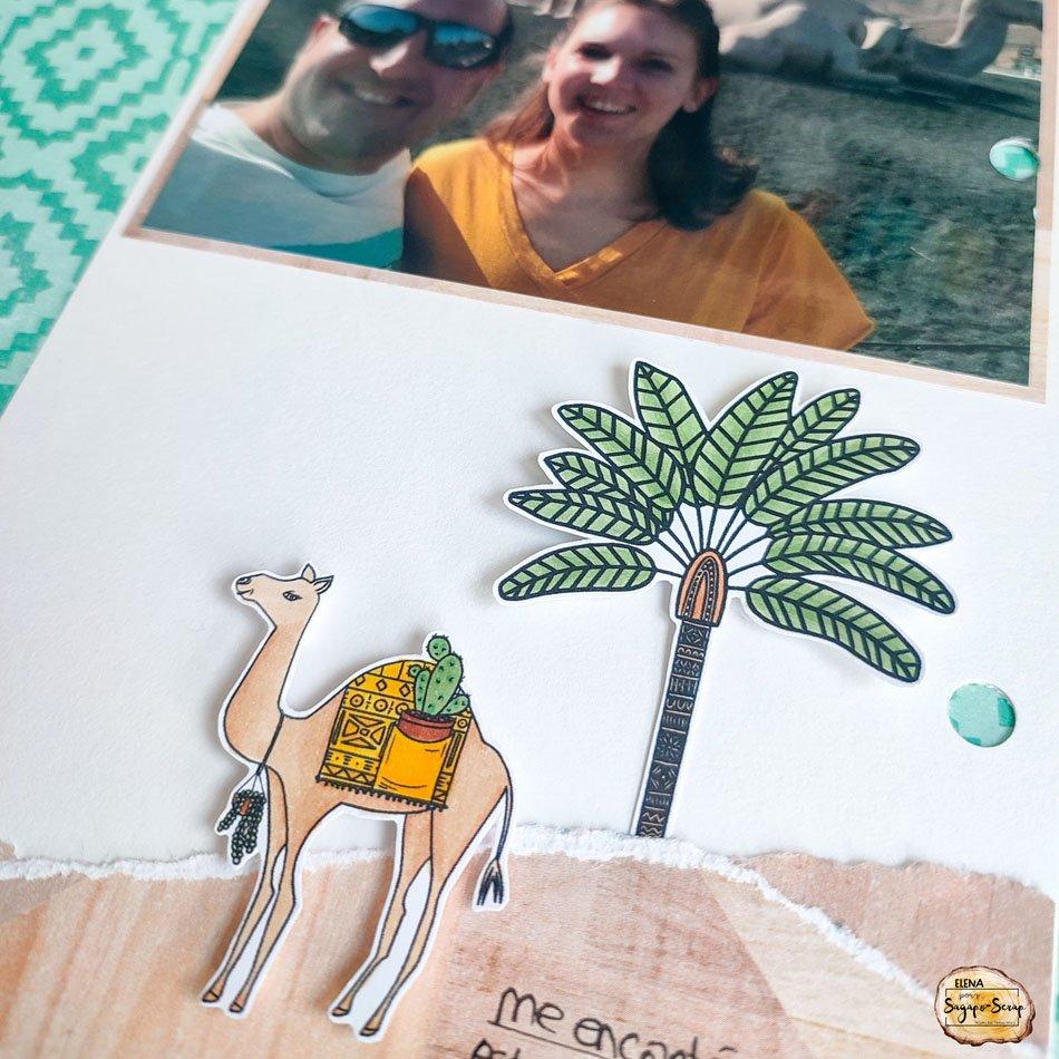 project life sable et mer dromadaire et palmier