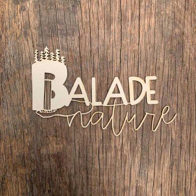 Carton-bois-texte-balade-nature