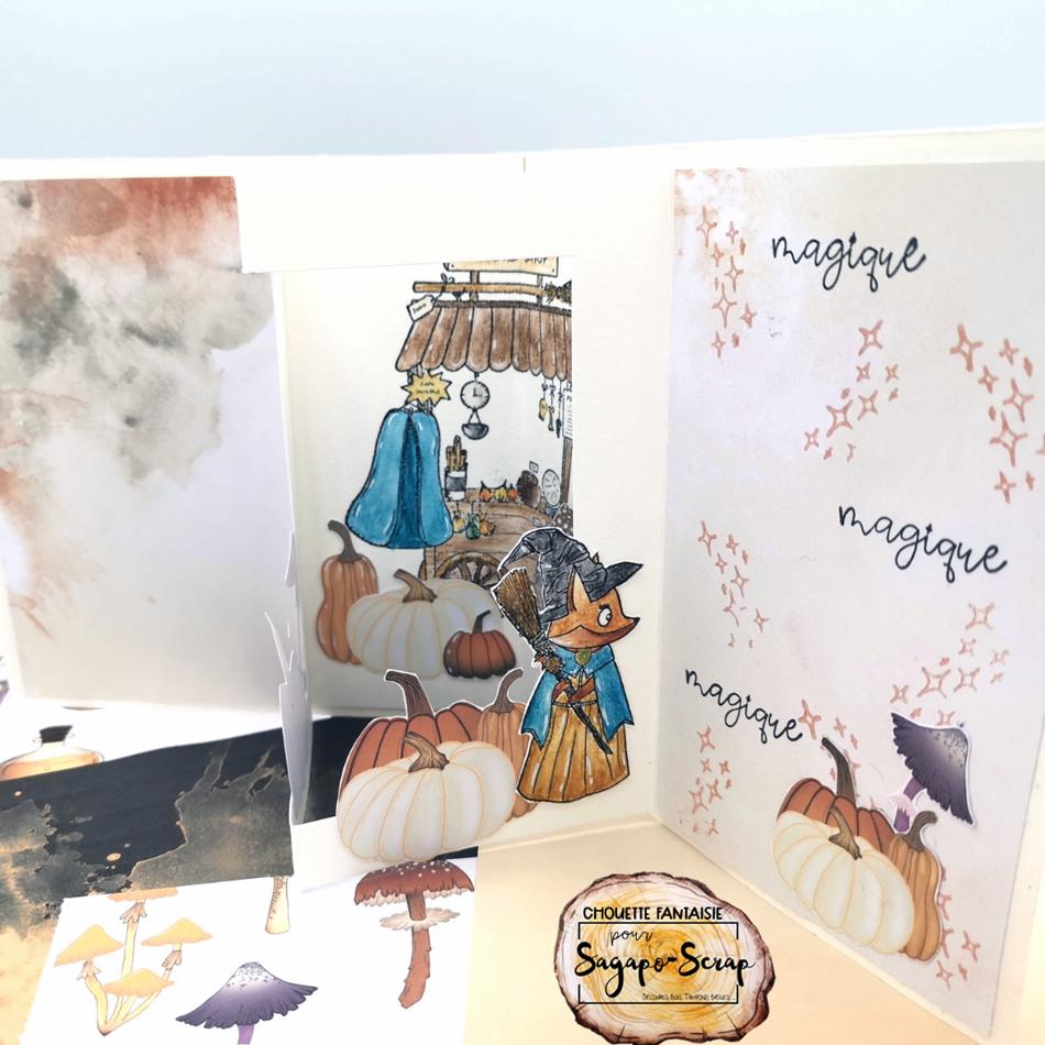 carte vitrine interieur droit vitrine automne magique chouette fantaisie