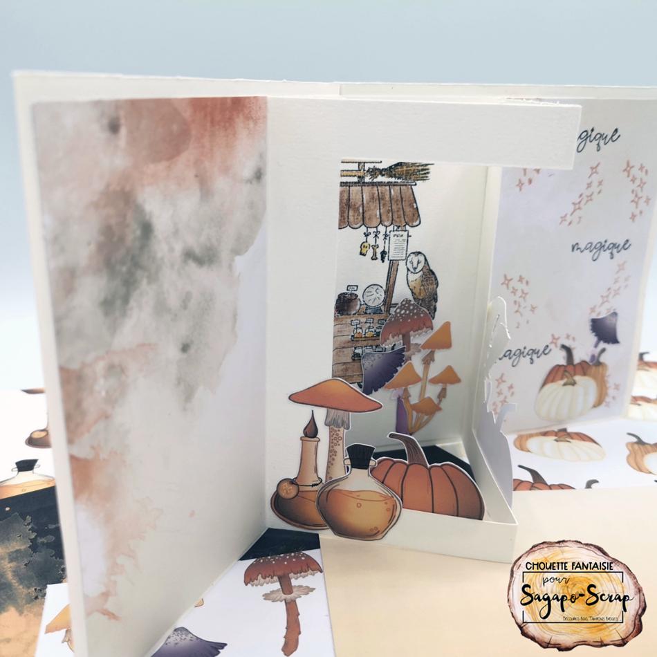 carte vitrine interieur gauche vitrine automne magique chouette fantaisie