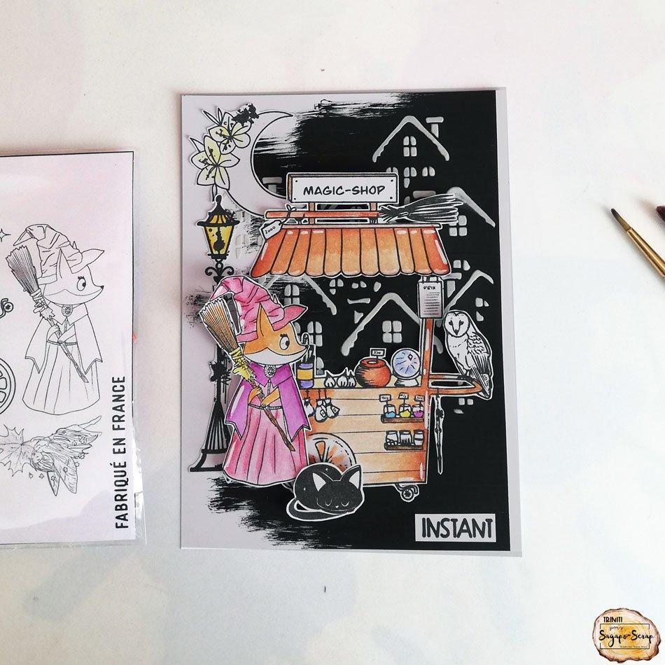 carte magie renarde sagapo triniti